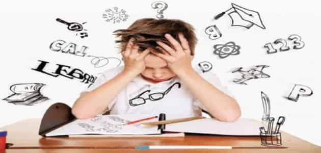 رسائل ماجستير في صعوبات التعلم pdf