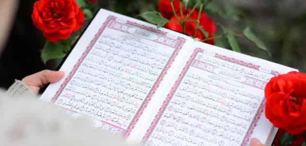رسائل ماجستير في القرآن وعلومه pdf
