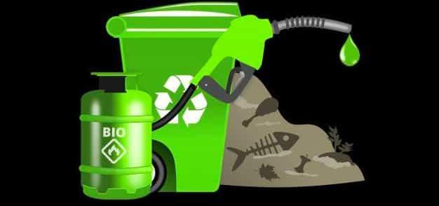 الوقود الحيوي في السودان