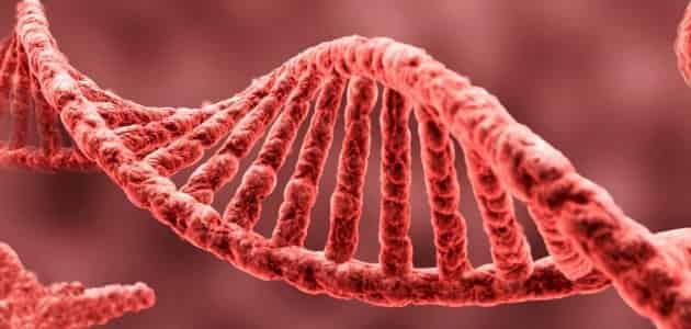 رسائل ماجستير في علم الوراثة