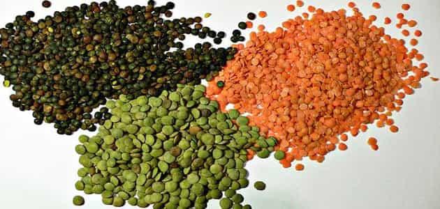 السعرات الحرارية في 100 جرام عدس مطبوخ