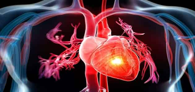 بحث عن القلب pdf