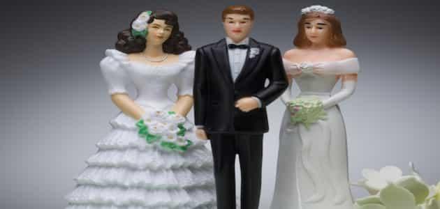 انا الزوجة الثانية كيف أتعامل مع زوجي